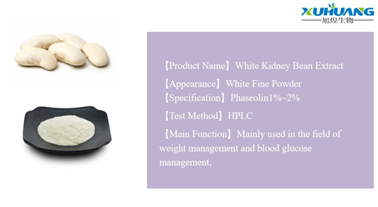 billiges White Kidney Bean Protein-Xuhuang